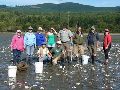 Jefferson MRC and Beach Watcher volunteers scatter oyster shells on Discovery Bay. Credit: Tori Cantelow